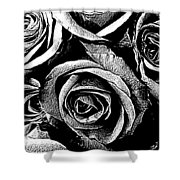 Dark Star Roses For David Bowie Shower Curtain