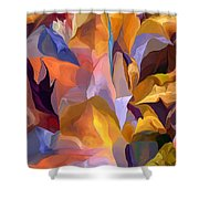 Abstract Vignettes Shower Curtain