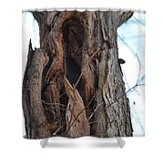 Abstract Winter Tree Shower Curtain