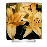 Abstract Yellow Asiatic Lily - 1 Shower Curtain