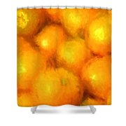 Abstracted Oranges Shower Curtain