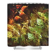 Abstraction 0277 Marucii Shower Curtain