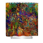 Abstraction 0380 Marucii Shower Curtain