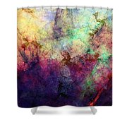 Abstraction 042914 Shower Curtain