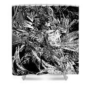 Abstraction  0495 - Marucii Shower Curtain