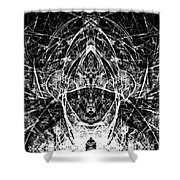 Abstraction 0542 Marucii Shower Curtain