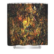 Abstraction 0556 Marucii Shower Curtain