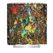 Abstraction 0557 Marucii Shower Curtain