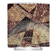 Abstraction 0630 Marucii Shower Curtain