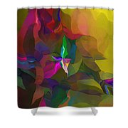 Abstraction 111212 Shower Curtain