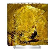 Abstraction 327 - Marucii Shower Curtain