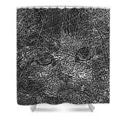 Abstraction 423 - Marucii Shower Curtain