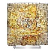 Abstraction 561-11-13 Marucii Shower Curtain