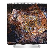 Abstraction 562-11-13 Marucii Shower Curtain
