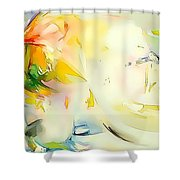 Abstraction 585-11-13 Marucii Shower Curtain