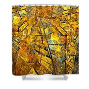 Abstraction 635-12-13 Marucii Shower Curtain