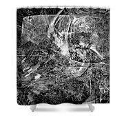 Abstraction B-w 0504 - Marucii Shower Curtain