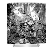 Abstraction B-w 0511 - Marucii Shower Curtain