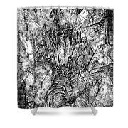 Abstraction B-w 0554 - Marucii Shower Curtain