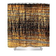 Abstract Reed And Water Patterns Shower Curtain