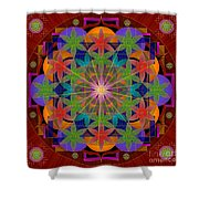 Abydos 2014 Shower Curtain