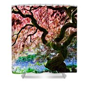 Acer Abstract Shower Curtain