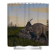 Achelousaurus Grazing In Swamp Shower Curtain