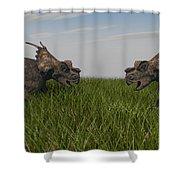 Achelousauruses Confrontation In Swamp Shower Curtain