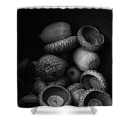 Acorns Black And White Shower Curtain