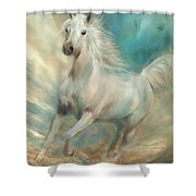 Across The Windswept Sky Shower Curtain