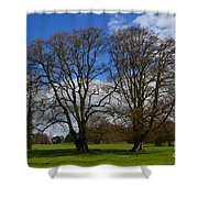 Adare Manor Grounds Shower Curtain