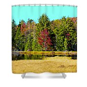 Adirondack Color Iv Shower Curtain