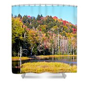 Adirondack Color V Shower Curtain