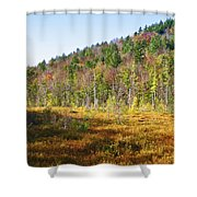 Adirondack Color Vi Shower Curtain