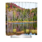 Adirondack Color Viii Shower Curtain