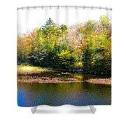 Adirondack Color X Shower Curtain