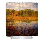Adirondack Pond II Shower Curtain