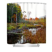 Adirondack Pond Iv Shower Curtain