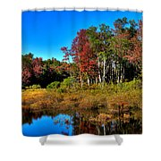 Adirondack Stream In Autumn Shower Curtain