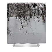 Adirondack Woods 3 Shower Curtain