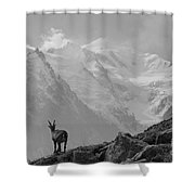 Admiring The View Shower Curtain by Camilla Brattemark