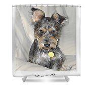 Adopted Shower Curtain