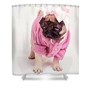 Adorable Pug Puppy In Pink Bow And Sweater Shower Curtain