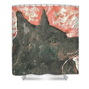 Adoring Eyes Shower Curtain