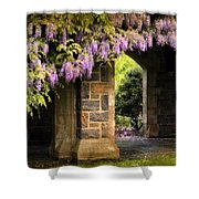 Adorned Shower Curtain