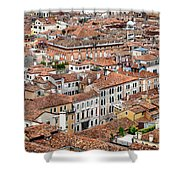 Aerial Of Venice Shower Curtain