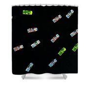 Aerial View Of A Dozen Colorful Pedal Shower Curtain