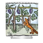 Aesop The Fox & The Grapes Shower Curtain