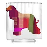 Afghan Hound 2 Shower Curtain