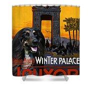 Afghan Hound Art - Luxor Poster Shower Curtain